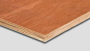 This wood panel bintangor is a simple imported plywood from PERI