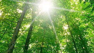 Duurzaam systeem voor bekisten met PERI DUO dat bovendien milieuvriendelijk is.