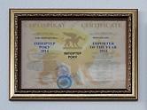 PERI Ukraine wurde mit dem Award als BESTER ZULIEFERER geehrt.