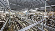 Die PERI UP Gerüstebene in 5 m Höhe schottet die Produktionslinie der Abfüllanlage zuverlässig von der Baumaßnahme an der Dachkonstruktion ab.